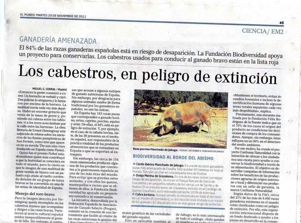 Articulo Diario El mundo